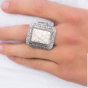5 for $30 ~~ Paparazzi EXPLORER RIDGE ring